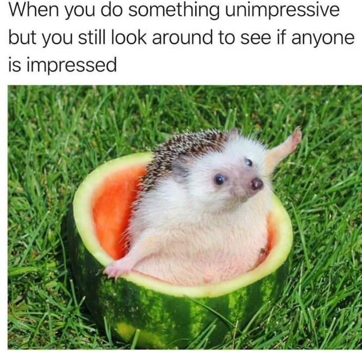 Cute - meme
