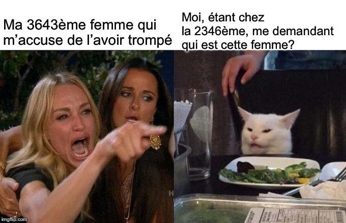 Le chat blindé - meme