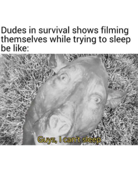 I can't sleep - meme
