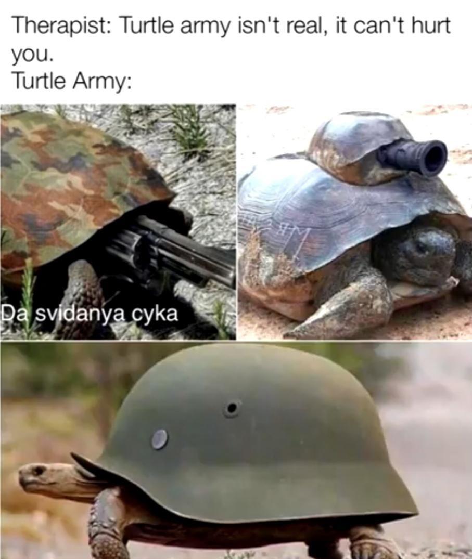 title likes turtles - meme