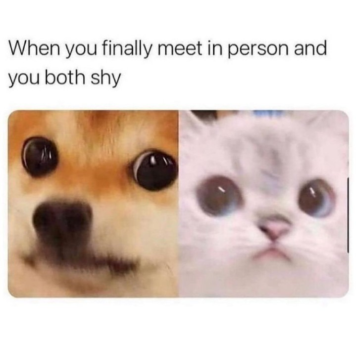Tiny - meme