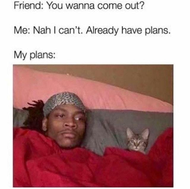 My plans for tonight - meme