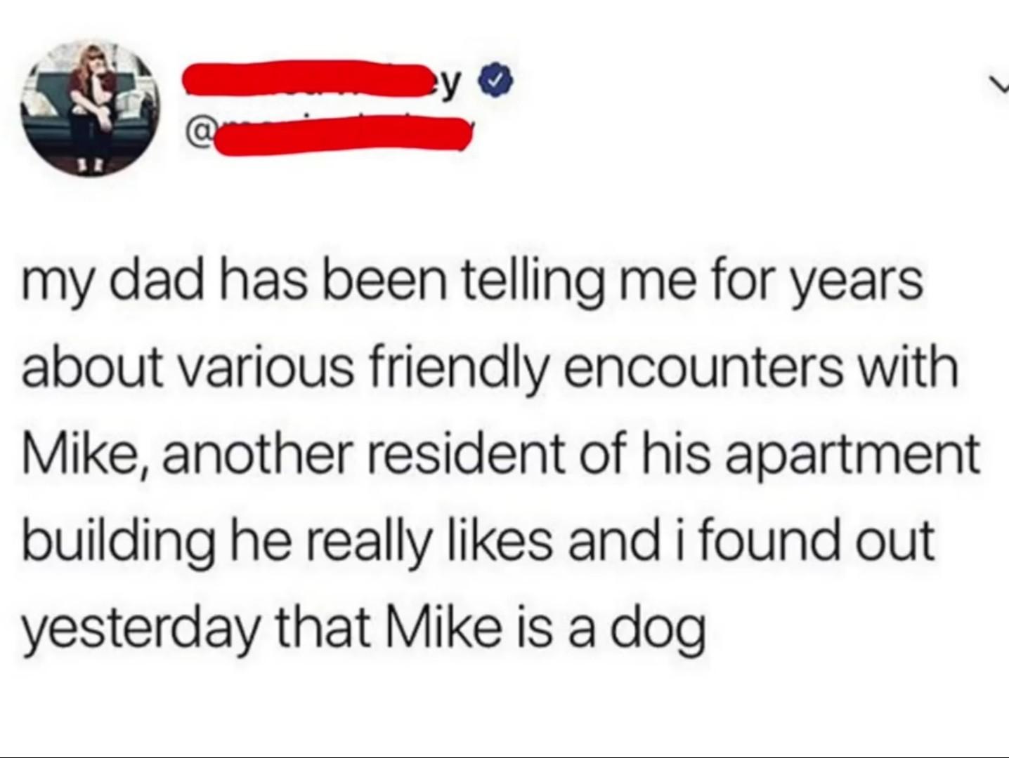 Respect your parents - meme
