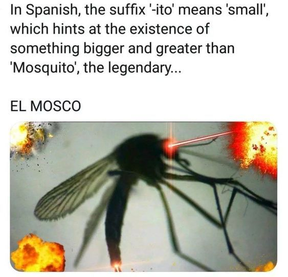 EL YEETO - meme