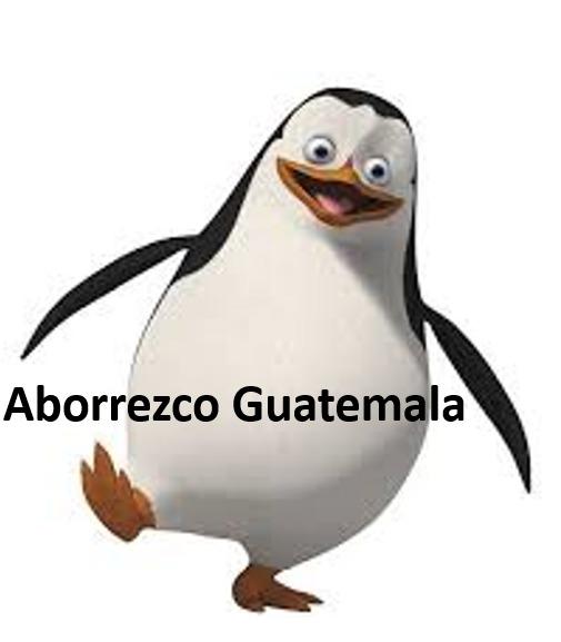 Aborrezco Guatemala - meme