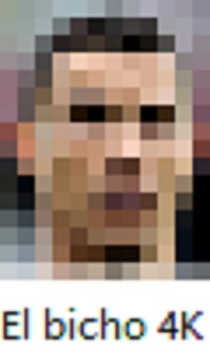 El bicho 4K - meme