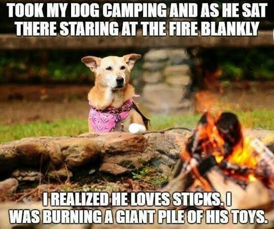 Why must you burn my toys hooman? - meme