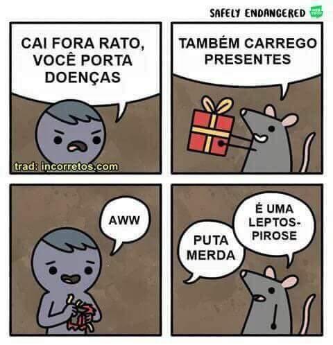 Bunitinho - meme