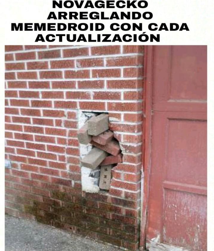 Ladrillos - meme