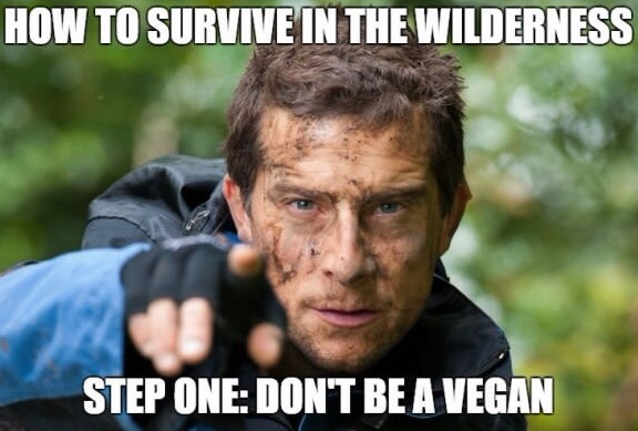 don't be a vegan, ya dummy. for your health! - meme