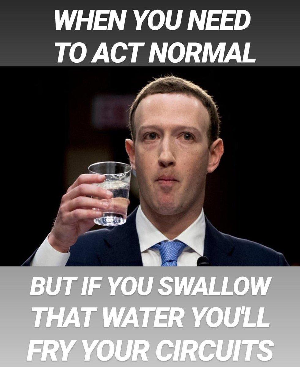Sending data zuccy:no senator - meme