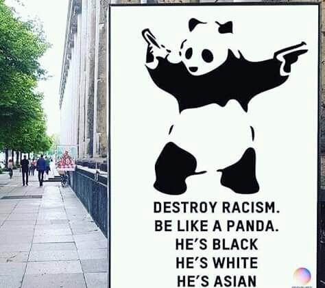 But panda's at near Extinct, so is anti-racism - meme