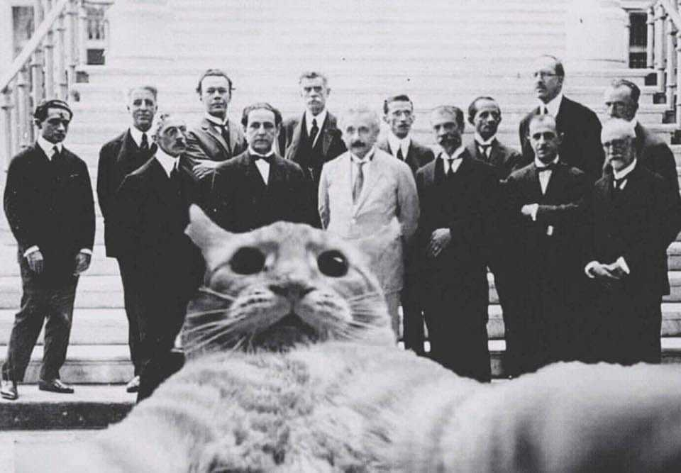 World's first selfie, taken by greatest mind of all time - meme