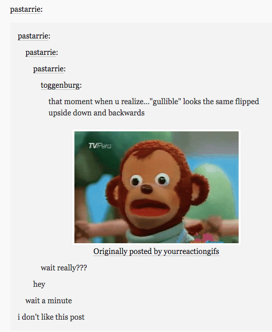 Did you know gullible is written in the tags? - meme