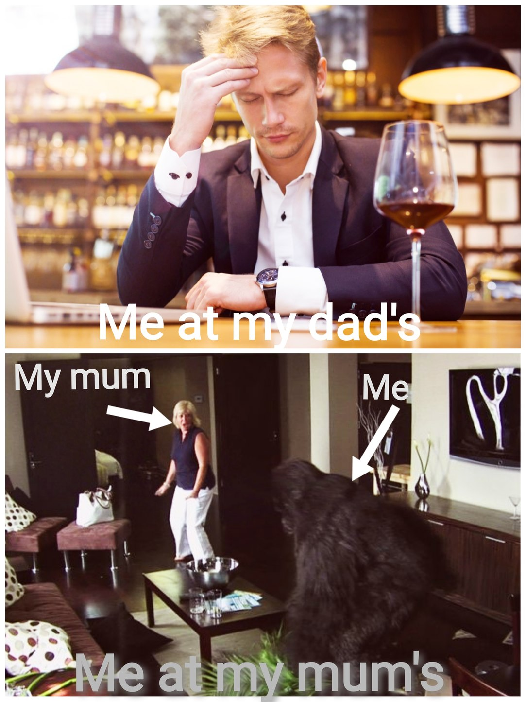 My life at my divorced parents' houses - meme