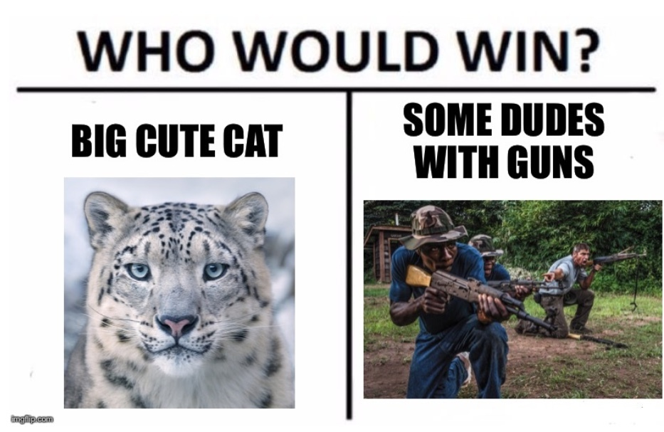 I vote for snow leopard - meme