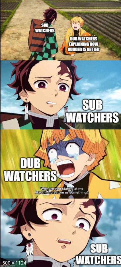 Dub v sub - meme