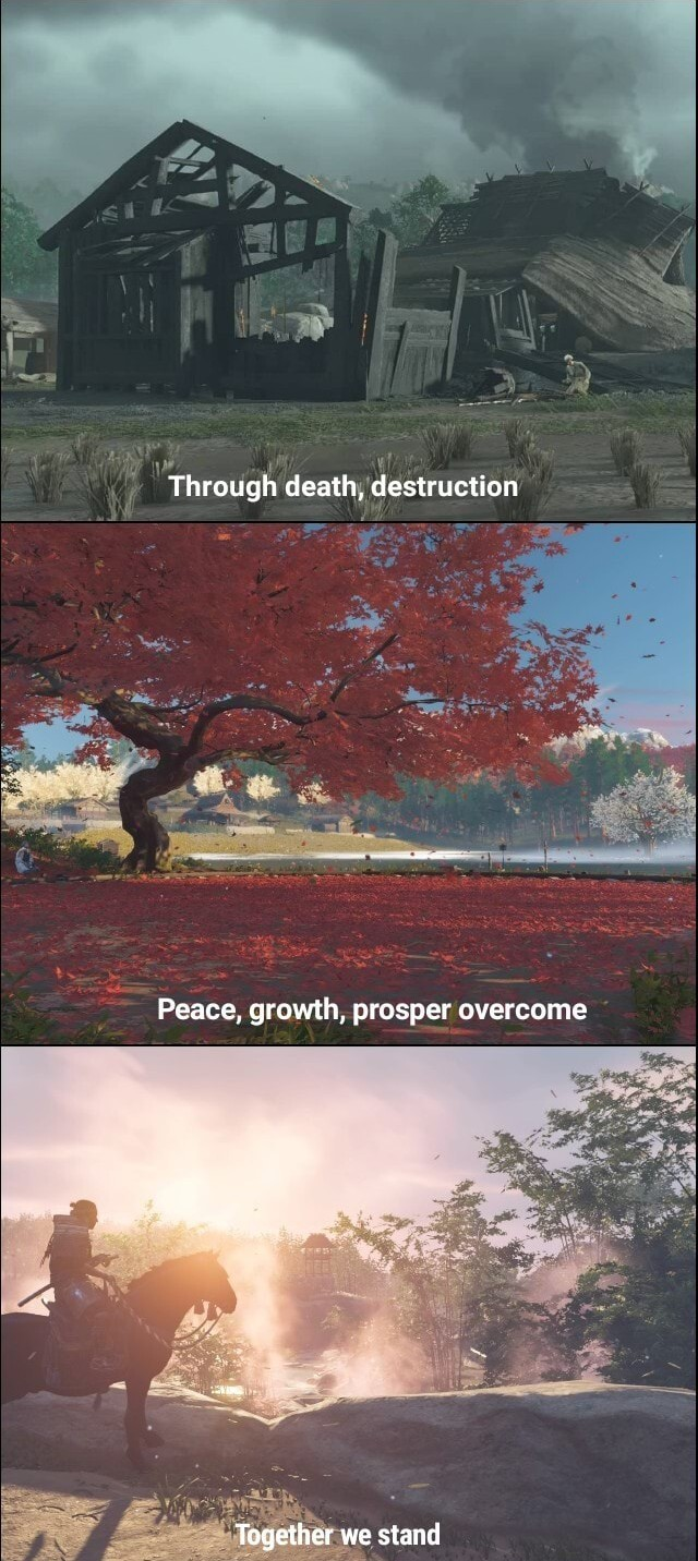 Reflection on Triumph - meme