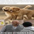 VERDADEROS MACHO ALFA VERGA DE ORO