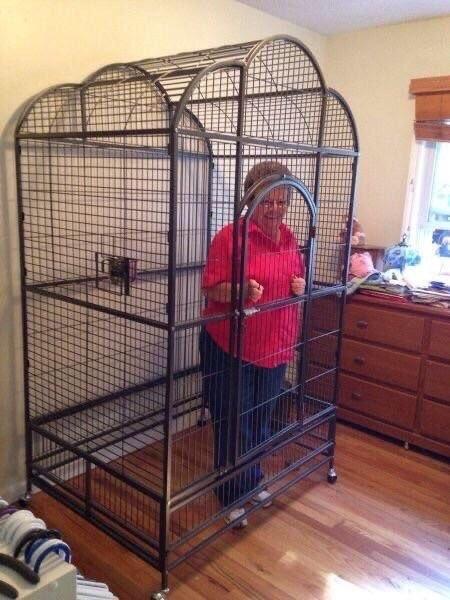 Caged boomer - meme