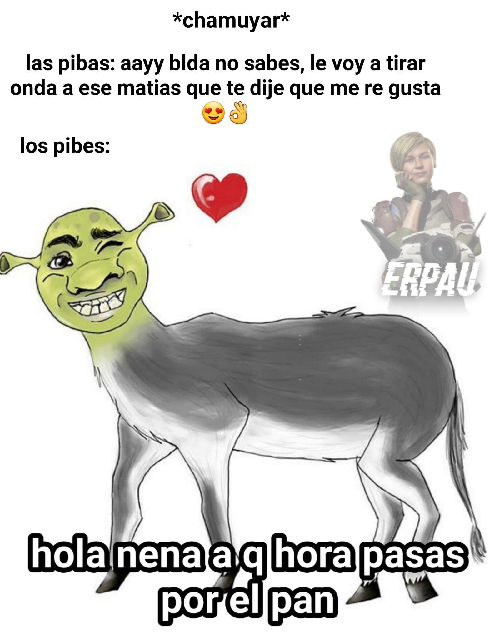 NOOO SHREK FURRO, ESO NO ES DE CRACKS :weeynooo: - meme