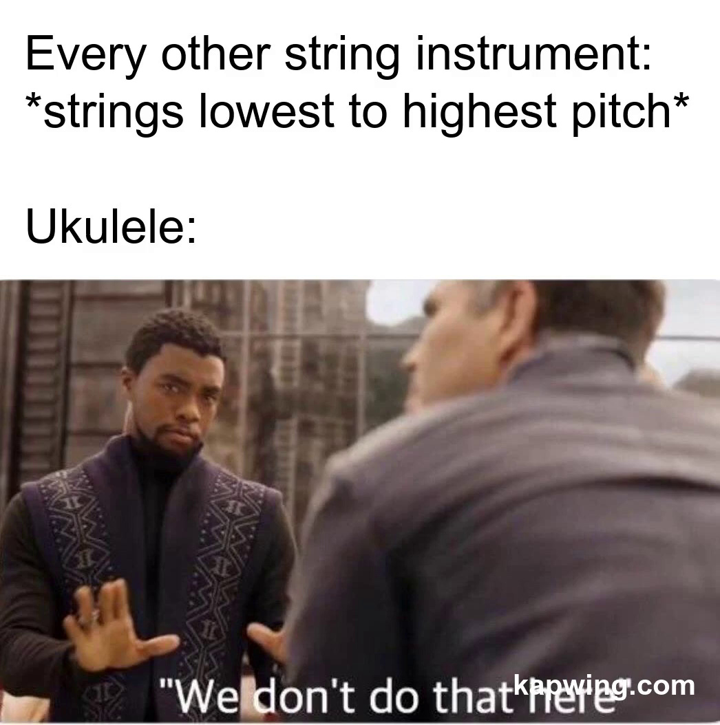 ukulele is so weird - meme