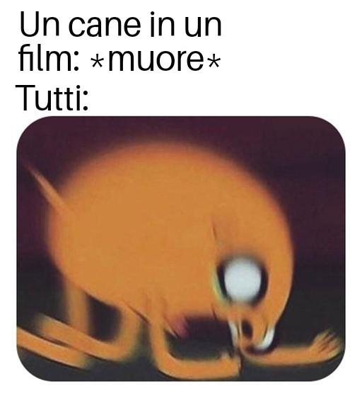 A me non succede - meme