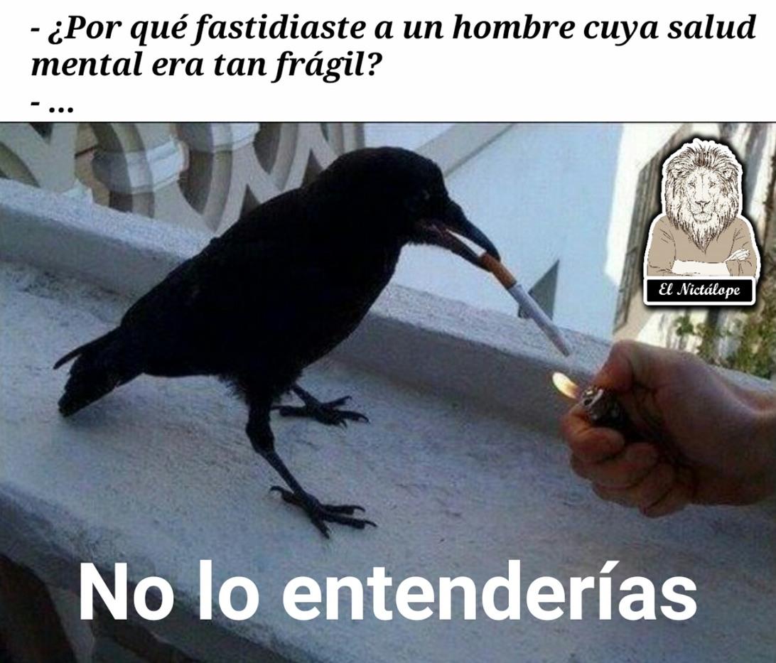 El cuervo - meme