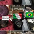 Ah sti reposter brasiliani/spagnoli/portoghesi/messicani...