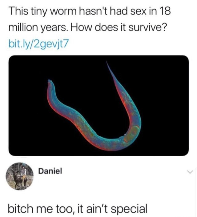 18 million years without sex - meme