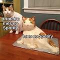 Minha experiência com Spotify