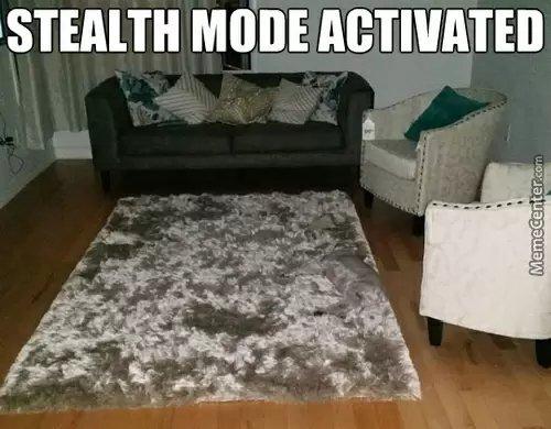 Steath mode - meme