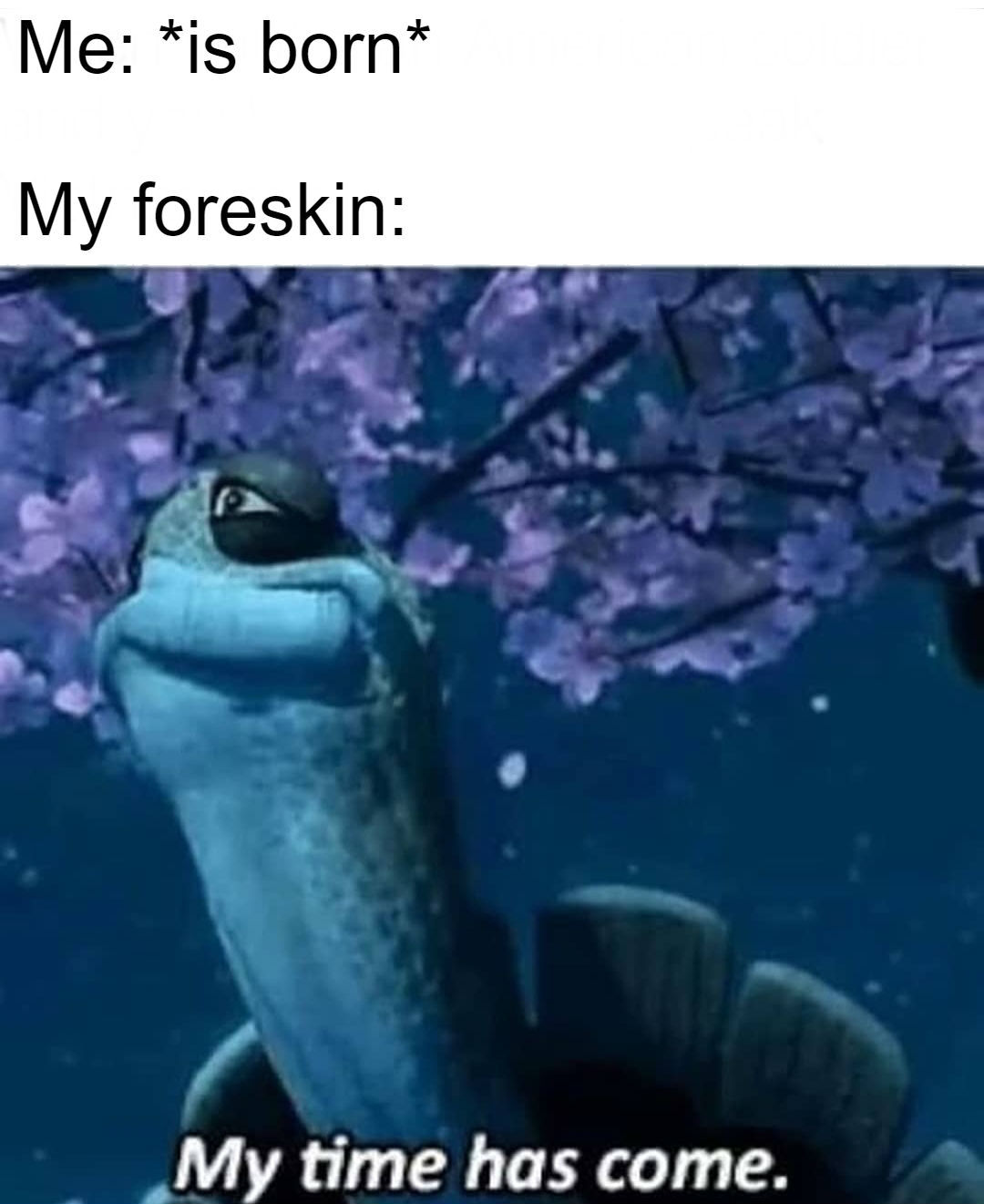 Press F for master Oogway's foreskin - meme