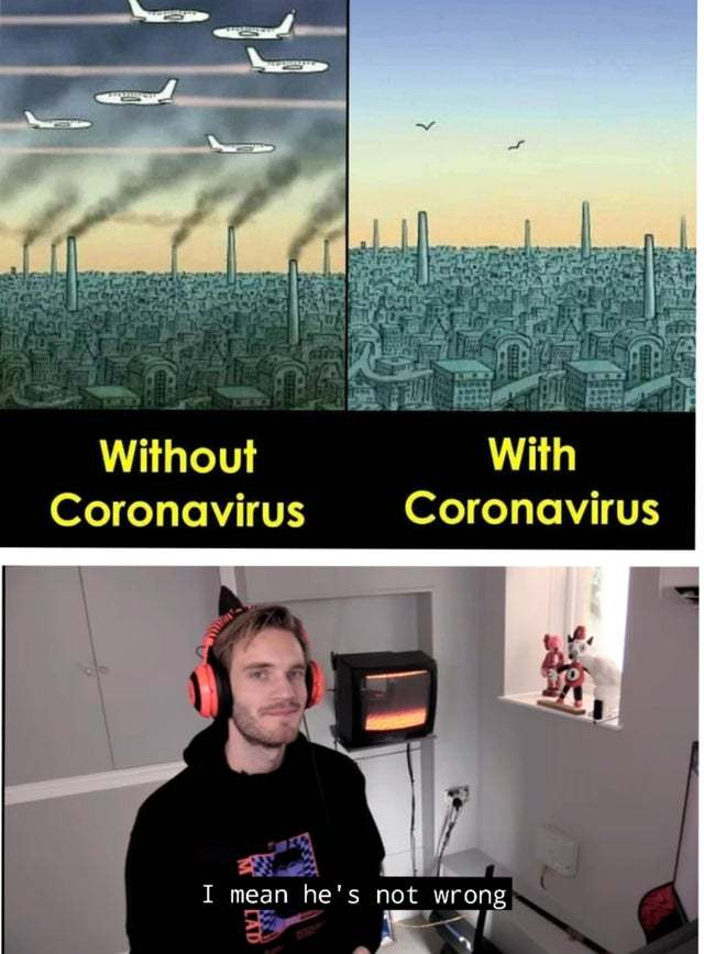 Coronavirus is actually good for the environment - meme