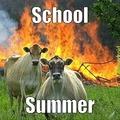gotta love summer