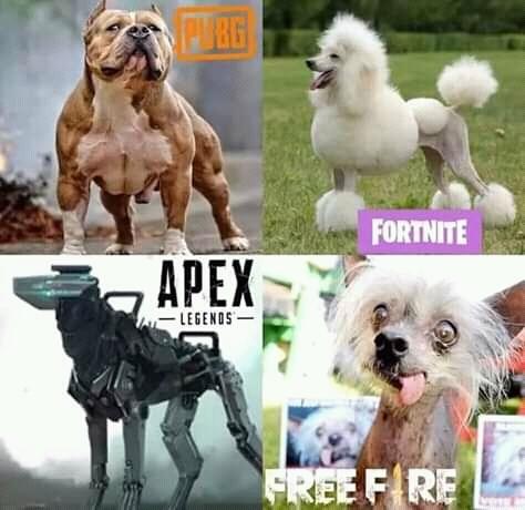Cachorro de cada jogador - meme
