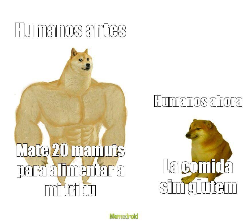 Humanos antes humanos ahora - meme