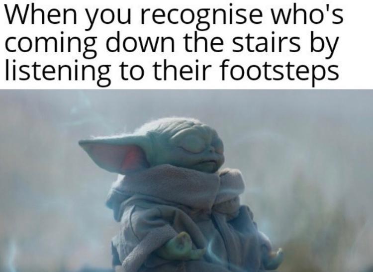 I know it's yo fat ass - meme