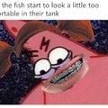 the fishy dead