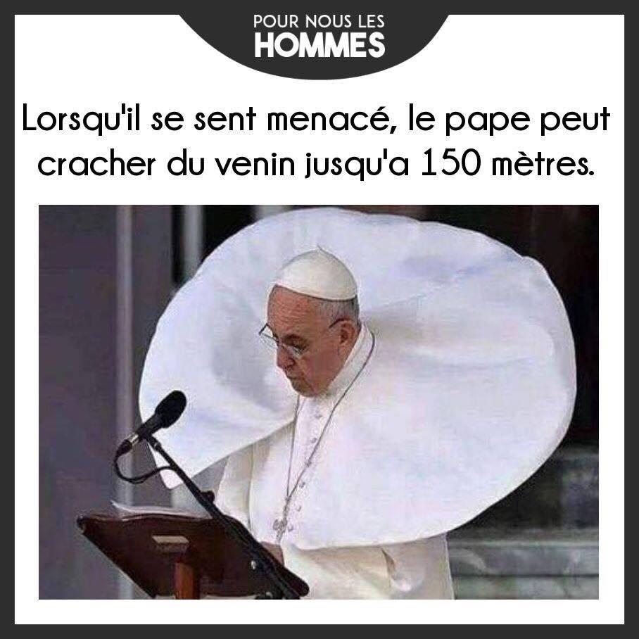 Pape - meme