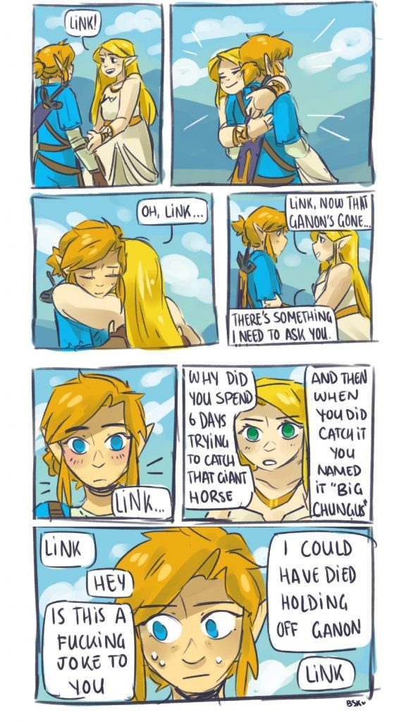 Zelda has a point. - meme