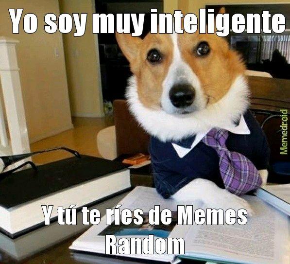 Lawyer Dog - meme