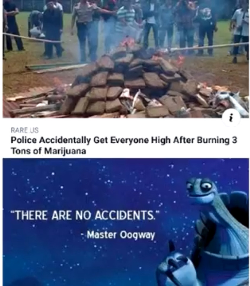There are no accidents - master oogway - meme