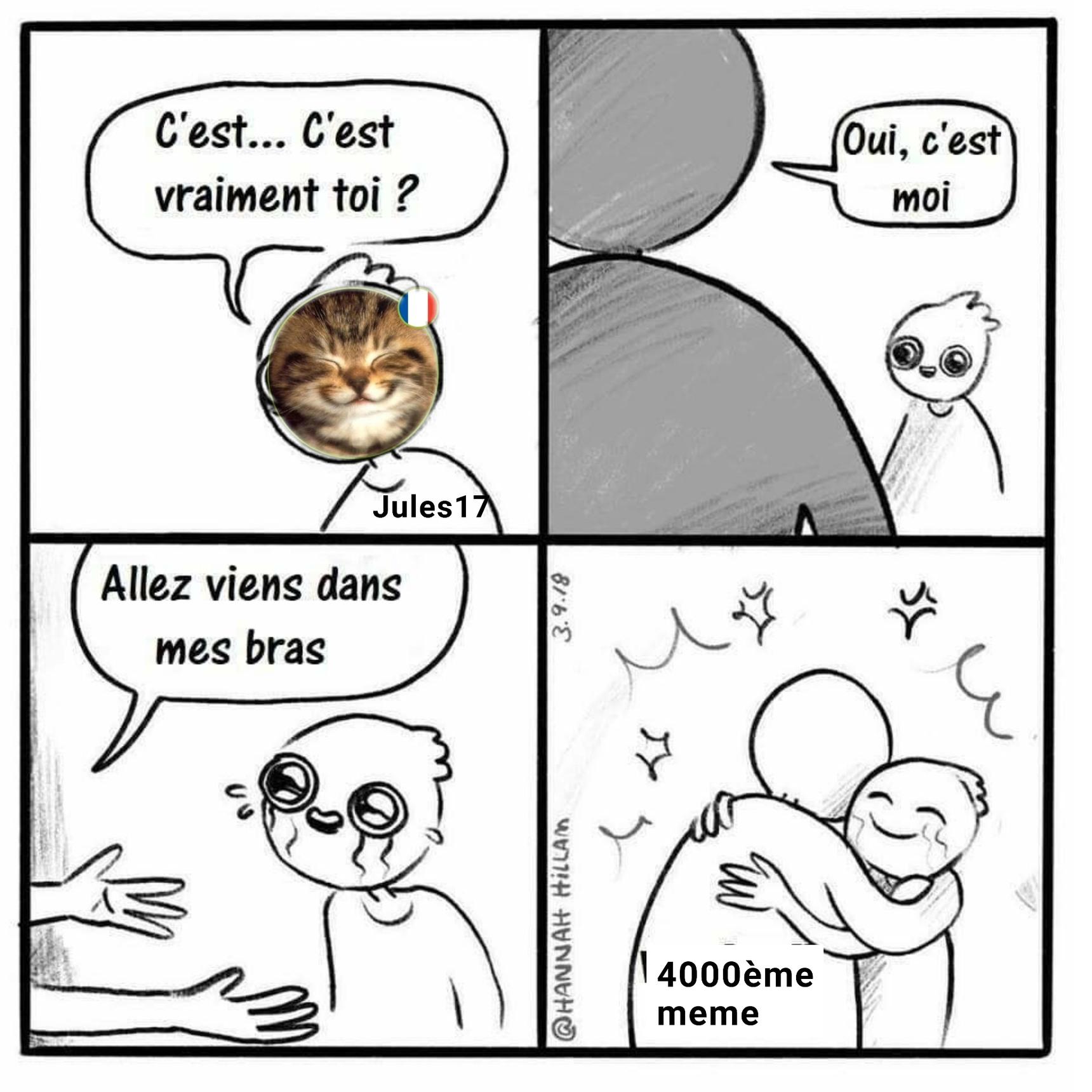 Jules17 et les memes