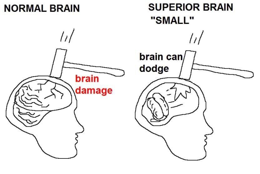 Small brain good :) - meme