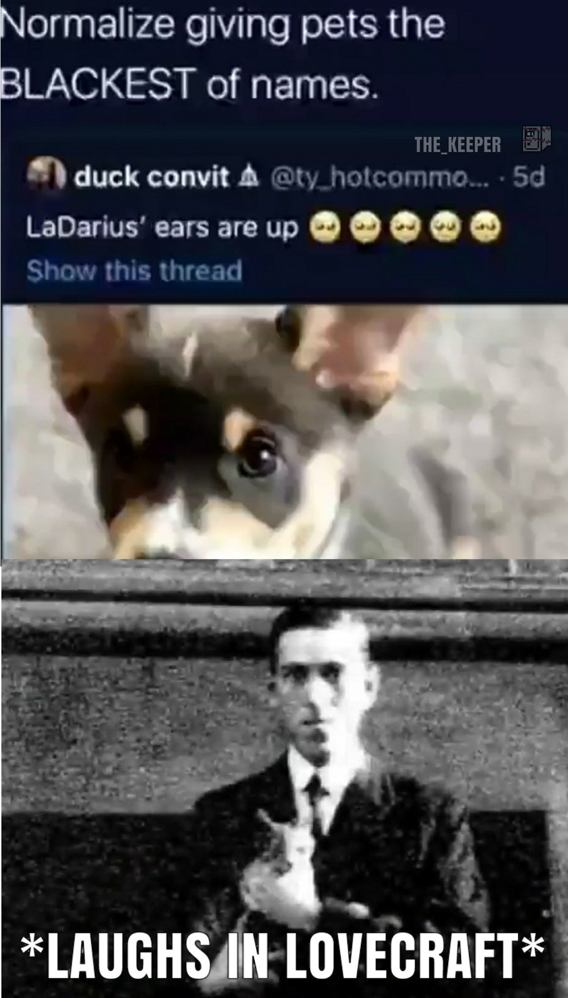 For those of you who don't understand, H.P. Lovecraft infamously gave his cat the loving name of... well...I'll let the comments tell you - meme