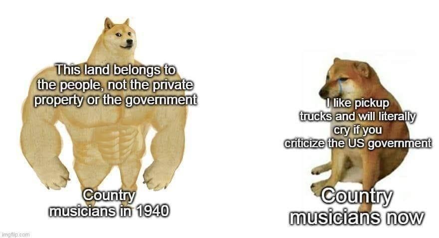 country musicians - meme