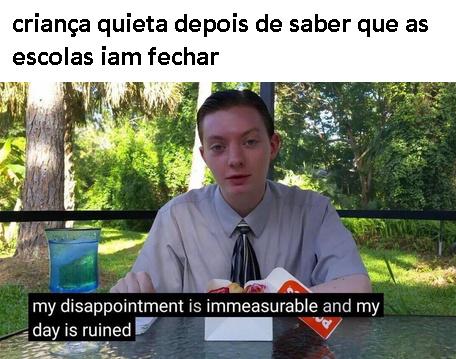 meme velho, tradução: minha decepção é imensuravel e meu dia está arruinado