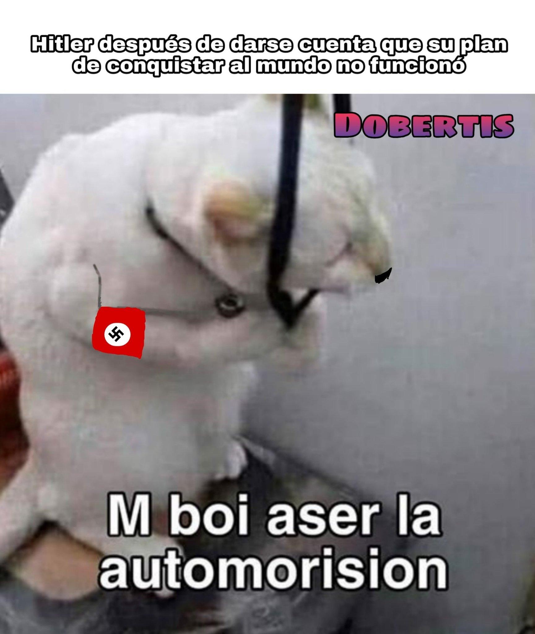 Un gato con bigote lol - meme