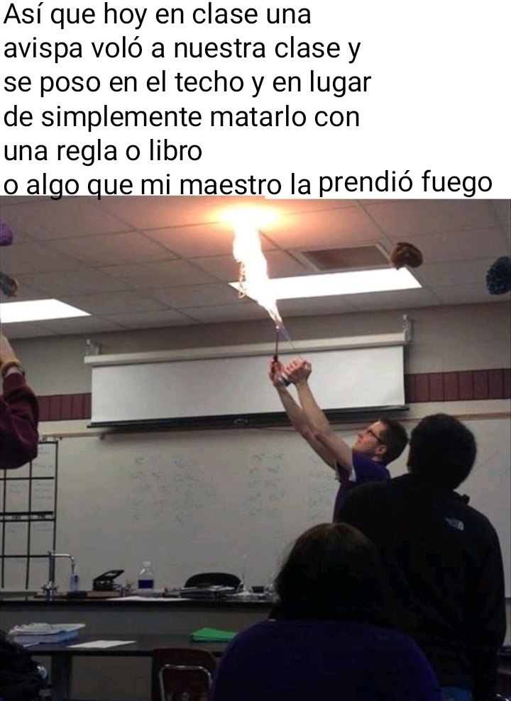 el profe está loco - meme